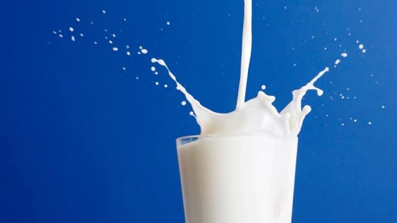 Учени разработват синтетично мляко