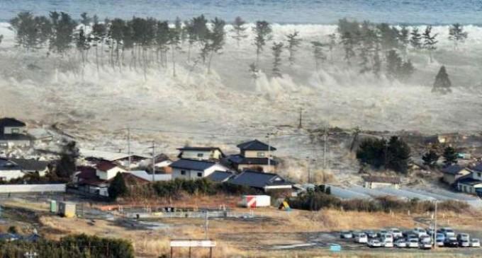 Момиче, отнесено от вълна цунами през 2004 г., се събра с родителите си след 10 години