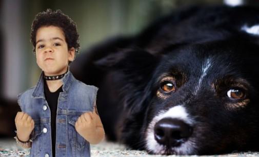 Нараства детската агресия върху животни