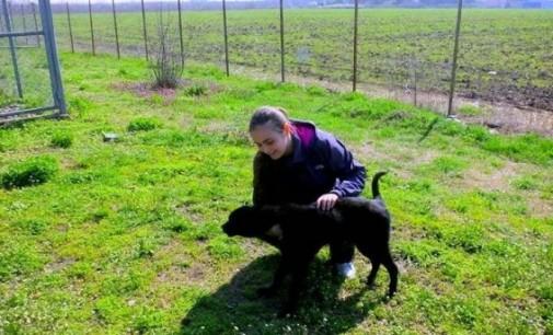 23-годишна старозагорка помага на животни в беда