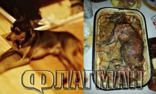 Заек ли е, куче ли е? Не, това е простотията българска!