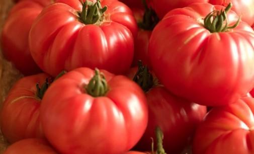 Европа забранява розовите домати