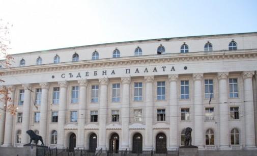 Над 50 майки се събраха за символичен протест в София