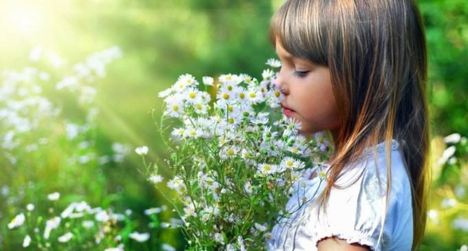 Свръх отровни растения, които имаме в дома или градината си