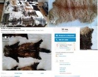 Изверг продава котешки кожи в интернет